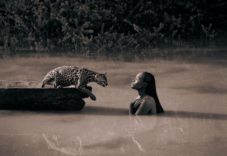 Фотограф Грегори Кольбер - №29