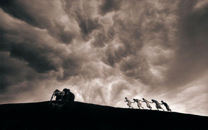 Фотограф Грегори Кольбер - №37