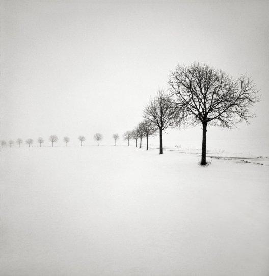 Шведский фотограф Хокан Странд - №4