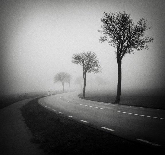 Шведский фотограф Хокан Странд - №3