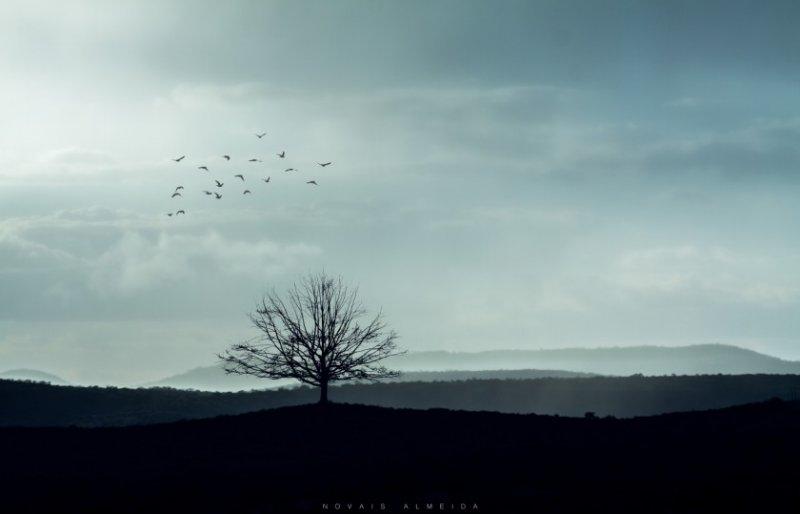 Красивые пейзажные фотографий со всей Земли - №13