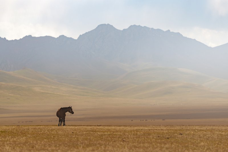 Потрясающие пейзажи Киргизии - №23