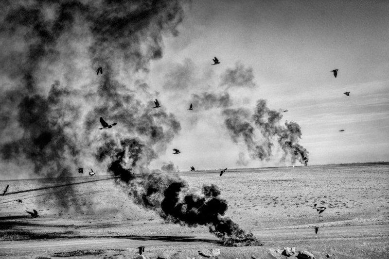Америка в фотографиях Мэтта Блэка - №4