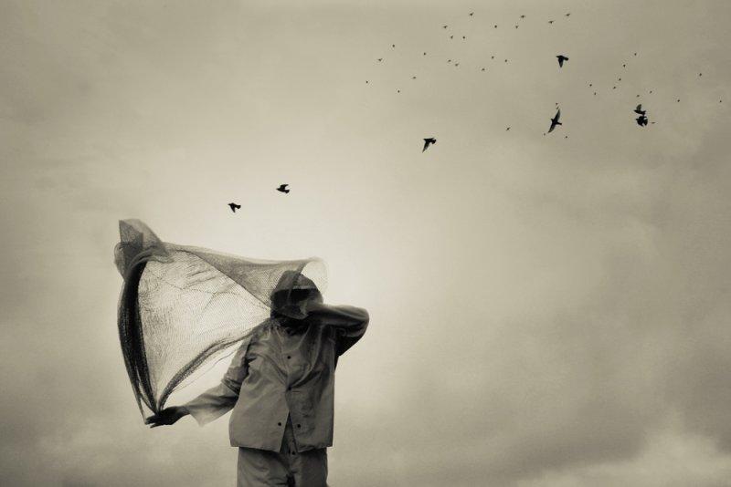 «Блуждающие сны». Фотограф Анджела Бэкон-Кидвелл - №13