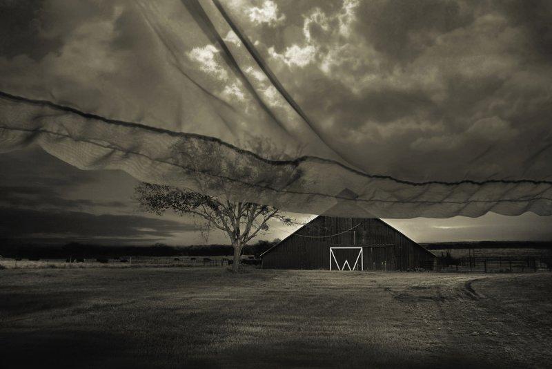 «Блуждающие сны». Фотограф Анджела Бэкон-Кидвелл - №12