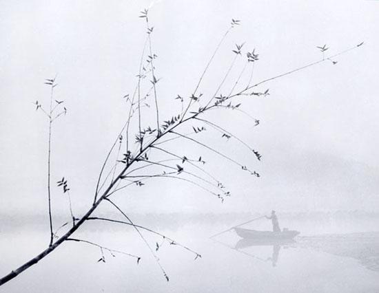 Фотограф Ho Fan - №6