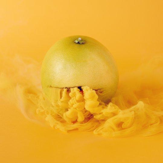 «Тайная жизнь фруктов и овощей» - №22