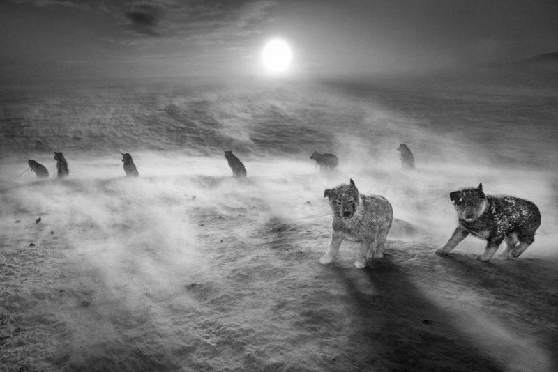 Фотограф Рагнар Аксельссон - №8