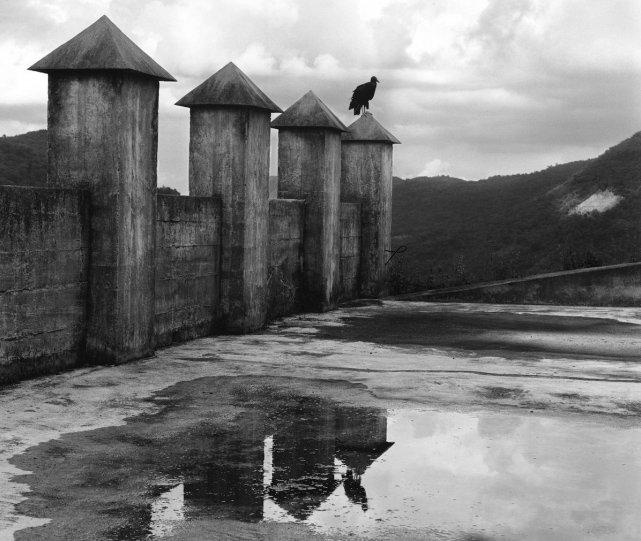 Мир чёрно-белой фотографии - №6