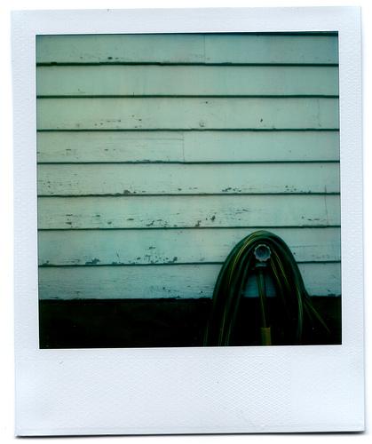 Фотограф Грант Гамильтон - №14