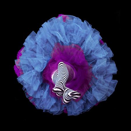 «Кринолиновые цветы» - №10