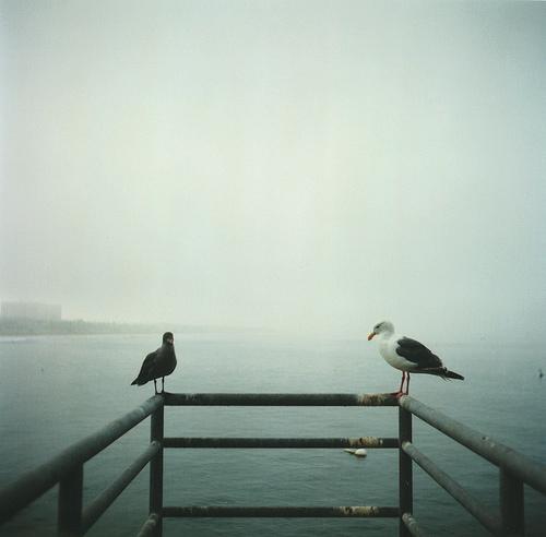 Фотограф Aaron Feaver - №15