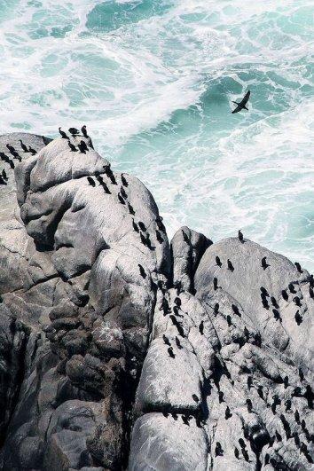 Удивительные побережья в красивых фото - №26