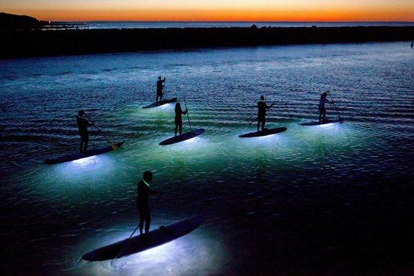 Новости в фотографиях - National Geographic Photo Contest 2013 (Часть 2) - №4