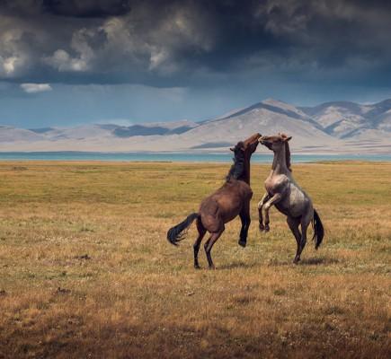Необъятная Россия в фото пейзажах Даниила Коржонова - №27