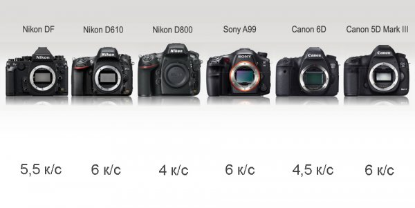 Сравнение новинок профессиональных зеркальных фото камер - №7
