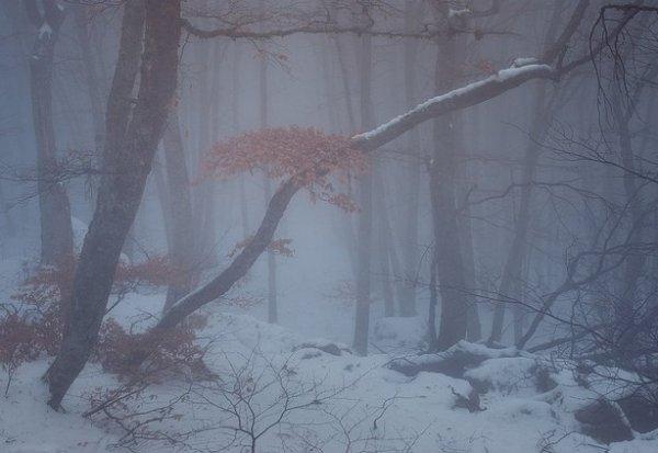Зимние фото пейзажи из Крыма - №45