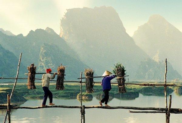 Ли Хоанг Лонг. Творчество увлеченного профессионального фотографа - №4