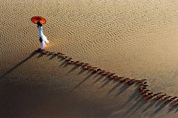 Ли Хоанг Лонг. Творчество увлеченного профессионального фотографа - №35