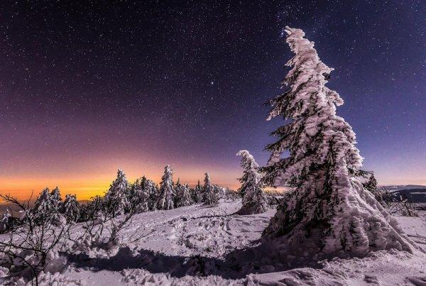 Урок фотографии. Как снимать зимой, полезные советы - №2