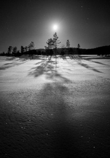 Урок фотографии. Как снимать зимой, полезные советы - №14