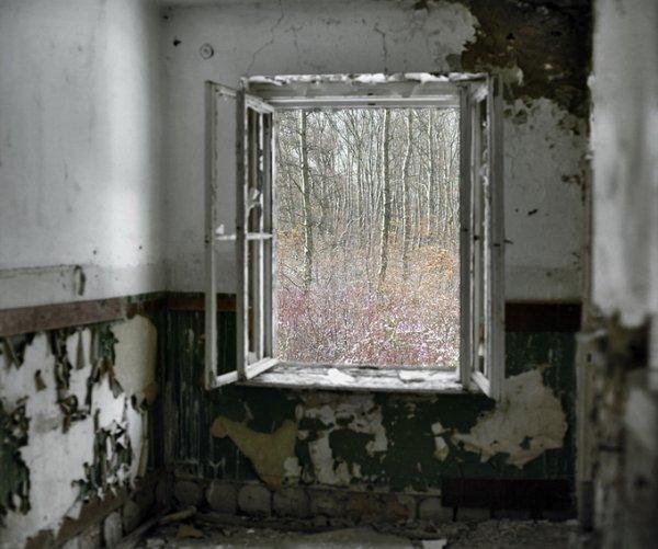 Граница между документальным и художественным фото. Tamas Dezso - №17