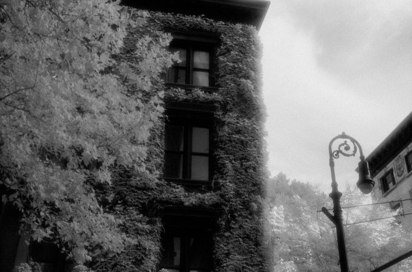 Шон Линч. Инфракрасные фото пейзажи Непала и другие работы  - №46