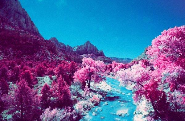 Шон Линч. Инфракрасные фото пейзажи Непала и другие работы  - №18