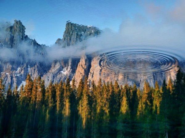 Удивительные и красивые фото кадры природы - №8