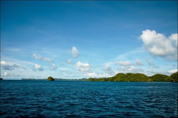Красивые фото озера медуз - №8