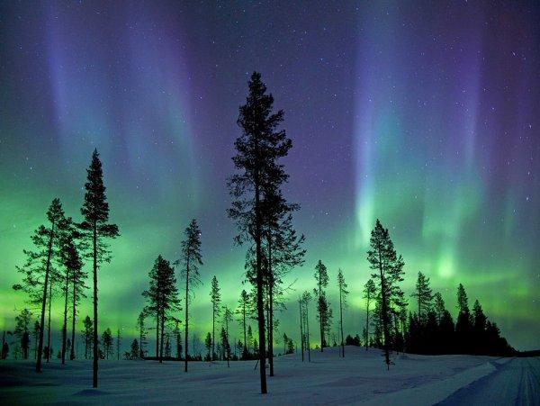 Самые интересные фото из мира науки за 2013 год - №5