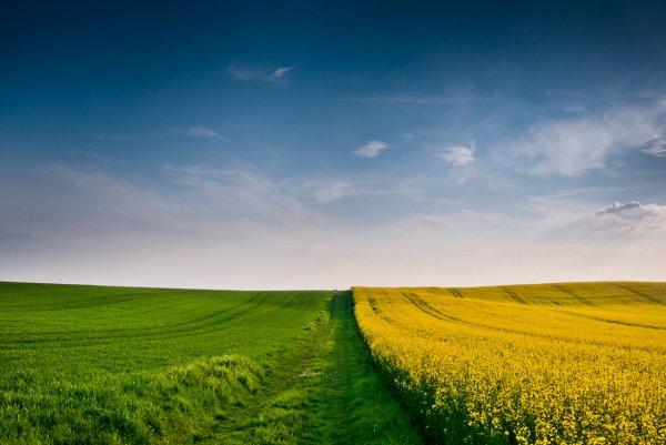Восхитительные фото пейзажи из Германии. Andreas Wonisch - №3