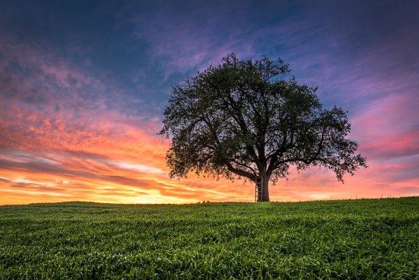 Восхитительные фото пейзажи из Германии. Andreas Wonisch - №23