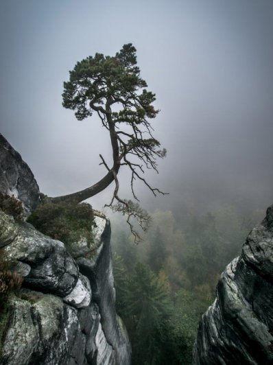 Восхитительные фото пейзажи из Германии. Andreas Wonisch - №27