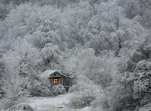 Урок фотографии. Поиск сюжетов для съемки зимой - №7
