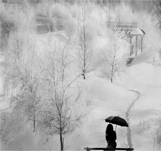 Урок фотографии. Поиск сюжетов для съемки зимой - №27