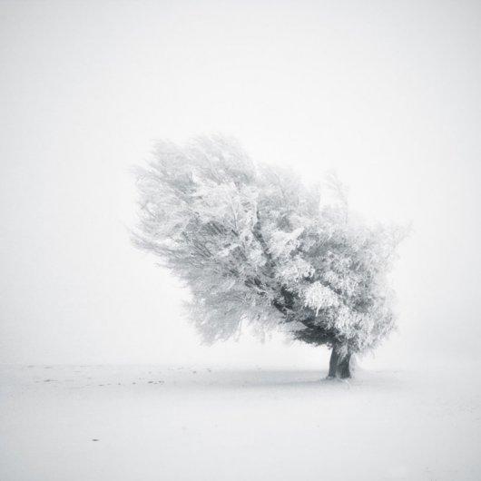 Спокойное творчество профессионального фотографа Майкла Шлегеля (Michael Schlegel) - №7