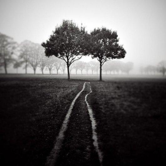 Спокойное творчество профессионального фотографа Майкла Шлегеля (Michael Schlegel) - №11
