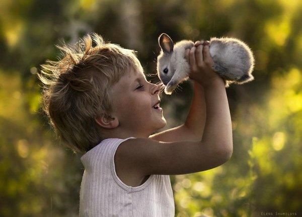 Очаровательные фото кадры - дети и животные - №8