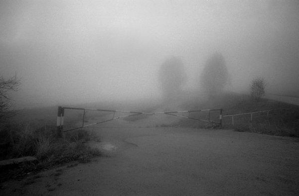 """Черно-белые фото Алины Тарабариновой: """"Фотография - это диалог"""" - №8"""