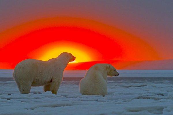 Красивый закат