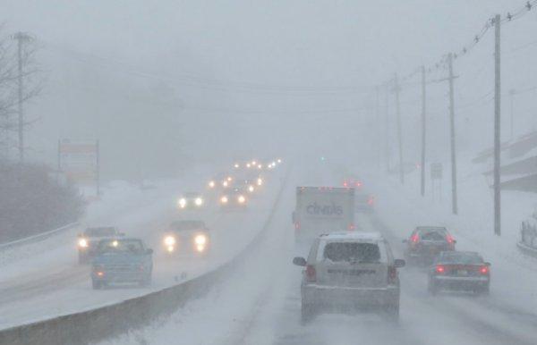 Фото: EPA/MATT CAMPBELL - Аномальная погода