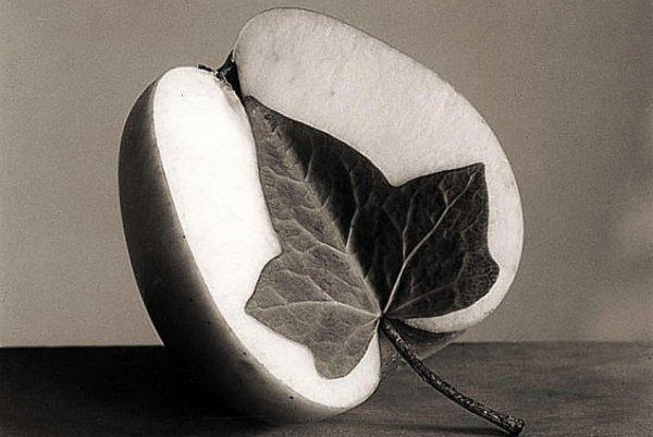 Чема Мадоза. Жанр сюрреализма в черно-белых фото - №6