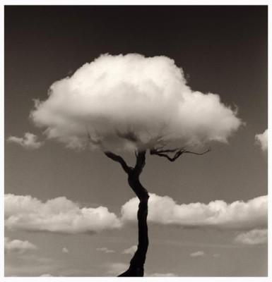 черно-белое фото онлайн