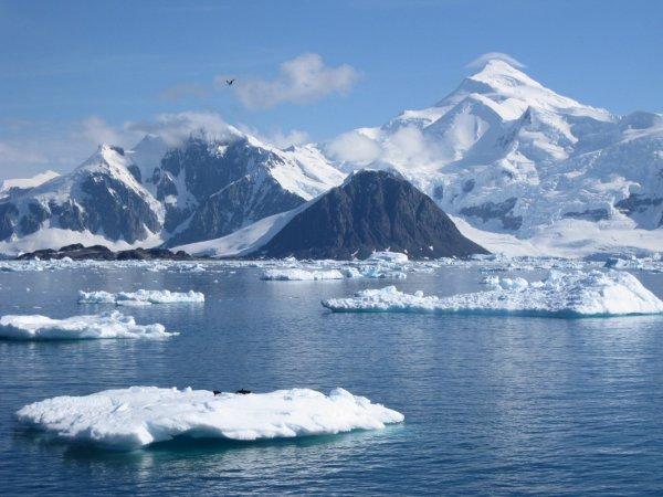 Загадочно спокойный мир Антарктиды - №2