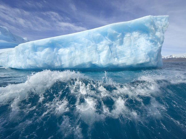 Загадочно спокойный мир Антарктиды - №6
