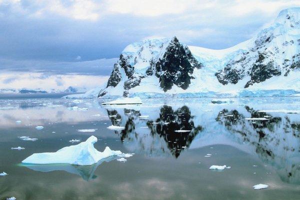 Загадочно спокойный мир Антарктиды - №14