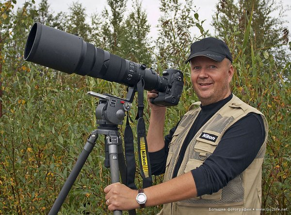 Финские совы - удивительные представители хищных птиц - №12