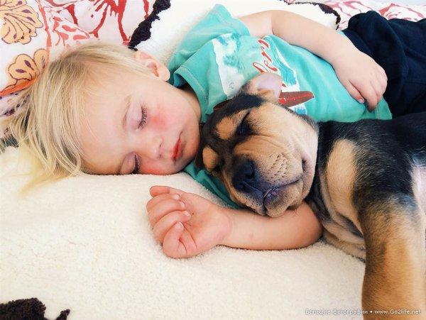 Милые дети и собачки - новый тренд Instagram - №8