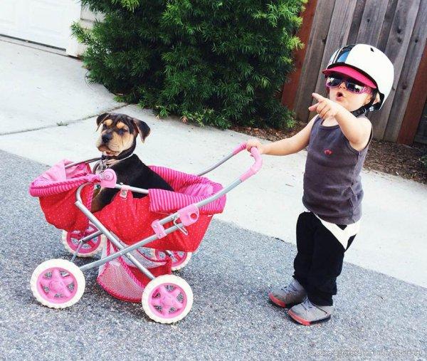 Милые дети и собачки - новый тренд Instagram - №12
